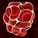 Tromboza i Trimbofilija - Kolegium Medic